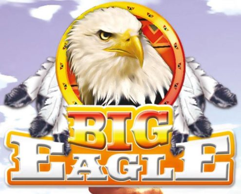 big eagle net srl