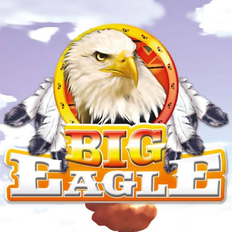 big eagle net srl